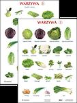 Plansza Warzywa 1
