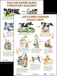 Plansza Jak dawniej robiono masło i sery Skąd się bierze mleko i przetwory mleczne